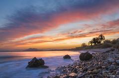 BETWEEN SUNSET PALM TREES (jopas2800) Tags: sunset sea espaa rock clouds palms purple murcia mediterrneo orilla nikond610