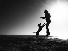 Dogdancing (Dan-Schneider) Tags: schwarzweiss scene schneider silhouette blackandwhite bw best beach light lens olympus flickr omdem10 moment monochrome mood sun sea dog human photography people prime