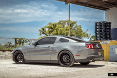 "HD WHEELS MUSTANG GT on ALL BLACK 20"" STAGGERED MSR (HPD USA) Tags: wheels hd mustang gt msr"
