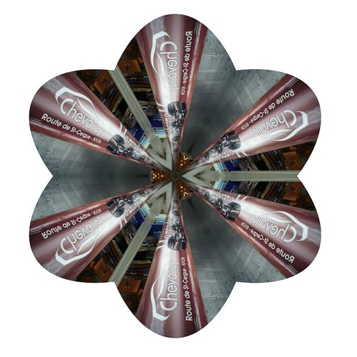 Floral form Kaleidoscope image from photo by escalator.advertising