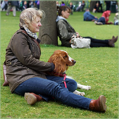 Well matched (hehaden) Tags: park woman dog gardens square sussex brighton pavilion spaniel