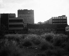 Untitled #15 (alex c-gray) Tags: rollei retro perth 80s 6x7