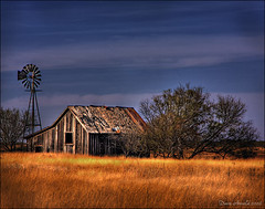Somewhere on the plains (Dave Arnold Photo) Tags: ranch usa tree windmill grass barn rural photography us photo cowboy texas photographer image tx arnold picture pic tex farmer plains panhandle texan farmyard ranchland davearnold davearnoldphotocom