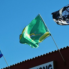Rugby, Sunny skies & Chevrolet (Cathlon) Tags: symbol rugby flag springbok scavenger6 ansh46