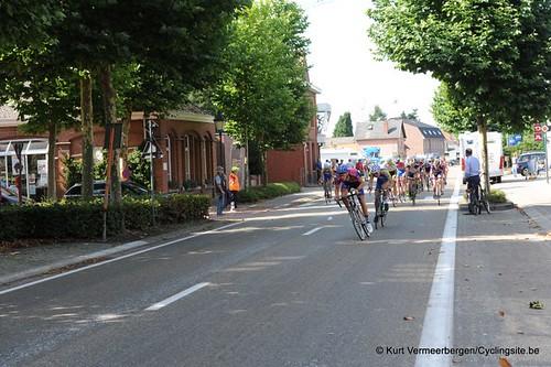 Minderhout (490)