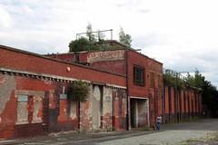 Eva Brothers (meg_nicol) Tags: street urban dog k manchester empty cobbles derelict infocus brickedup highquality redbric canon5d2