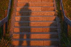 Hi ! (Rene Mensen) Tags: light sunset shadow sunlight stairs nikon dune schaduw duinen trap texel d5100