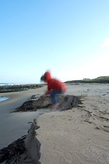 1-10-2013 (Copperhobnob) Tags: aberdeenshire stcombsbeach