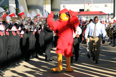 UofL vs Rutgers 10-10-2013 -  5 (MarchingCards) Tags: music college cup cards drums photo football university cardinal photos drum band trumpet flute sugar marching louisville marchingband horn tuba brass ul clarinet cardinals bugle uofl louisvillecardinals cmb mellophone foodball universityoflouisville 2013 marchingcards cardinalband cardinal cardinalmarchingband uofl
