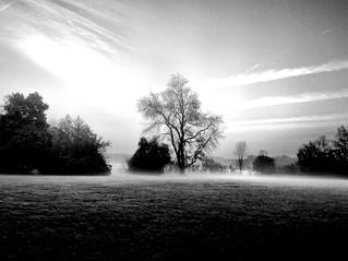 Frozen Fog Along The Huron At Dawn