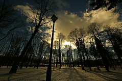 Winter in the park (Zyla, K. alone) Tags: park winter nature landscape poland polska zima beskidniski wysowa thebp justpentax pentaxart pentaxkr sigma816 flickrandroidapp:filter=none