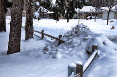 The Long Winter (Wes Iversen) Tags: trees houses winter snow fences hff nikkor18300mm fencefriday mountprospectgolfclub