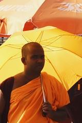 Camaeu jaune (jaromama) Tags: orange yellow monk moine bouddhism flickrchallengegroup