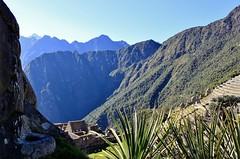 Machu Picchu (zug55) Tags: peru inca ruins terrace terraces perú inka unescoworldheritagesite unesco worldheritagesite explore ruinas machupicchu sacredvalley terraza vallesagrado terrazas patrimoniodelahumanidad agriculturalterraces agriculturalterrace santuariohistóricodemachupicchu zonaagrícola sectoragrícola
