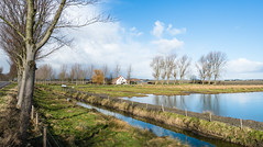 Rural Dutch landscape (RuudMorijn-NL) Tags: travel blue trees winter light sky house lake cold reflection building tree green ice home nature water netherlands dutch field grass weather architecture clouds rural river landscape real outdoors bomen colorful europe day exterior village estate view natural image cloudy outdoor rustic scenic wolken layer thin dag idyllic tranquil dun kleurrijk ijs zuidholland zonnige platteland zonnig landelijk wolkenlucht winterdag dirksland spiegelend zuidhollands wateroppervlak laagje spiegelglad westdijk breedegooi