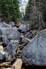 Yosemite Trip - Jan 2015 - 252 (www.bazpics.com) Tags: california park ca usa nature america landscape scenery unitedstates hiking national yosemite barryoneilphotography
