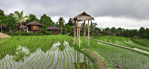 Munduk- Puri Lumbung, Bali