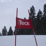 Teck Gate at 2015 Parsons super-G PHOTO CREDIT: Davis Jevning