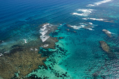 WA Coral Bay - Coral Reef - 3117