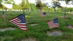 Memorial Day 2016 (bpephin) Tags: usa memorial flag usflag