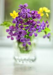 Wild Flowers in a Glass (explored 5-13-16) (WilliamND4) Tags: flowers wow 50mm nikon d750 wildflowers nikond750