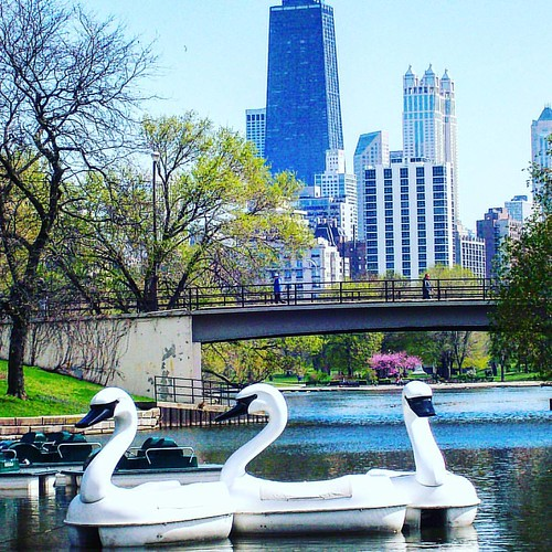 #TBT Who remembers these guys???  #imalocaltourist #Chicago @lincolnparkzoo