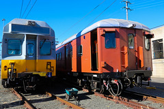 C6 and F1 @ Flemington Car Sheds (Photography Perspectiv) Tags: railroad heritage train vintage transport sydney railway f1 emu passenger rollingstock redrattler cset fset chopperset redrattlerfsetheritagesydneypassengertransportrollingstocksetsrailway