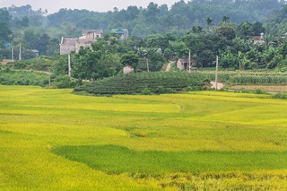 thai nguyen - vietnam 24