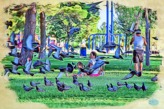 0622 IMG_7376 (JRmanNn) Tags: lasvegas pigeons sunsetpark mokuhanga