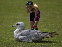 She Explains (swong95765) Tags: woman bird lady female gull lawn explain explanation discuss explaining coversation porportion