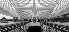 Architecture with a capital A... (RALPHKE) Tags: travel roof santiago building lines architecture canon buildings blackwhite flickr belgium structures structure symmetry architectural trainstation calatrava symmetric symmetrical santiagocalatrava roofstructure lige trainstationligeguillemins canoneos750d