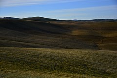 Summer 2016 (Antonio Cinotti ) Tags: landscape paesaggio toscana tuscany italy italia siena hills colline campagnatoscana cretesenesi asciano nikond7100 nikon d7100 rollinghills nikon1685 summer