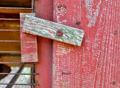 Latch (Neal3K) Tags: red detail green texture wire nail nails faded hutch woodgrain latch