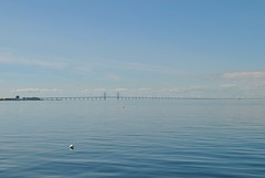 resund Bridge (itsclara13) Tags: torso turning malmo oresund