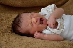 Zíííív (Petrusia1) Tags: newborn agnes agni newbornphotography