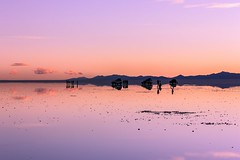 Salar de Uyuni (Never House) Tags: uyuni salar de bolivia lapaz paz potosi sur south america sudamerica canon 550d 55250 sunset cool raulwong city nature beauty reflejo