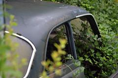 simca (jacques sof) Tags: abandoned voiture oldcar foret remains bit verdure abandonne epaves greenerytransport
