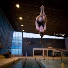 Usual training in Brussels, Belgium (monsieur I) Tags: brussels sports sport belgium diving swimmingpool belgian intheair acrobatic acrobaticdiving monsieuri royalbrusselsposeidon