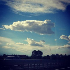 #cane #cani #dog #dogs #nuvola #nuvole #cloud #clouds #strana #strange #curious #curioso #bello #beautiful #beautifulcloud #beautifulclouds #dogcloud #autostrada #tollroad #highway #motorway #educatorecinofilo #dogstrainer (DanielOssino_EducatoreCinofilo) Tags: instagramapp square squareformat iphoneography uploaded:by=instagram xproii cane cani dog dogs nuvola nuvole cloud clouds strana strano strange curious curioso curiosa bello bella beautiful beautifulcloud beautifulclouds dogscloud dogsclouds dogcloud dogclouds autostrada toll road tollroad strada street highway motor way motorway educatore cinofilo educatorecinofilo dogstrainer trainer