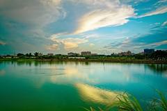 2016-06-18 18.36.52 (pang yu liu) Tags: park reflection pond dusk 06 pate jun  2016