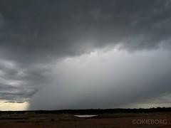 Oklahoma Thunderstorm, 6/26/16. (OkieBorg) Tags: cloud storm oklahoma rain weather clouds cloudy thunderstorm oklahomathunderstorm oklahomastorm okwx