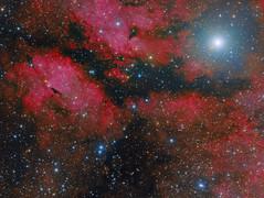IC1318 (Roberto Colombari) Tags: stars astrophotography astrofotografia dsw cygnus nebulas nebulae deepsky astrometrydotnet:status=solved deepskywest astrometrydotnet:id=nova1620182