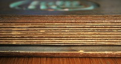 #stripes (flowergirlaaa) Tags: wood paper japanese book antique bamboo binding folds concertina flickrfriday