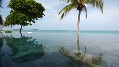 Koh Samui Chaweng Beach (soma-samui.com) Tags: beach thailand island kohsamui chaweng      synergysamui
