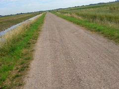 Cycling between Rotterdam & Delft (onno de wit) Tags: rotterdam delft berkel berkelenrodenrijs boezem sheep schapen windmolens windmill green meadows weilanden zomer summer polder polders dutchlowlands