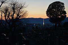 Kyoto (Jose Monsalve 2) Tags: sunset atardecer kyoto japon kyototower puestadelsol