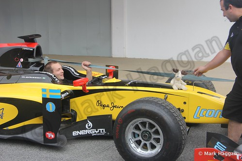 A reindeer hitches a lift on Marcus Ericsson's GP2 car at the 2013 Spanish Grand Prix