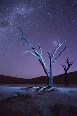 Nightfall in Namibia (1) (Gies!) Tags: lightpainting namibia nightfall deadvlei