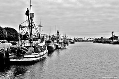 Tie up (Lenny Lloyd da Silva) Tags: boats harbor fishing fisherman pacific ships working pacificocean socal commercial fishingboats oceanview sanpedro workingboats seiners purseseiners commercialfishingboats coastlineboats