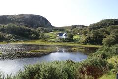 Lochside from the Loch